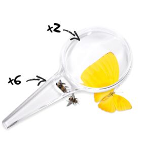 Magnifying Glass 80 mm 2X- 6X